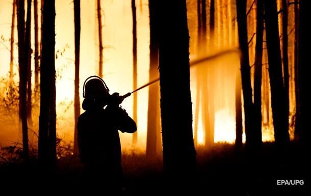 У Німеччині через лісову пожежу евакуювали сотні людей