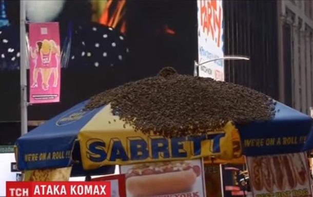 Тысячи пчел напали на зонтик в Нью-Йорке