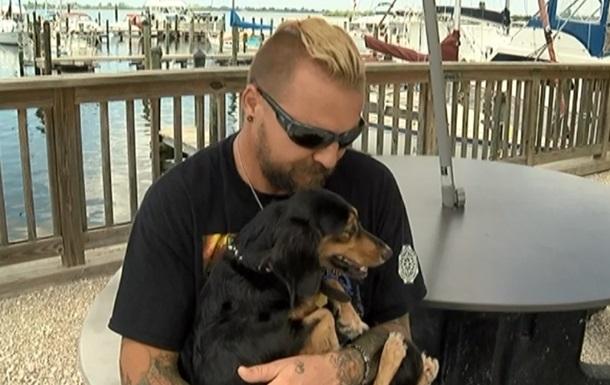 Собака, впавши з яхти, проплив у шторм п ять кілометрів
