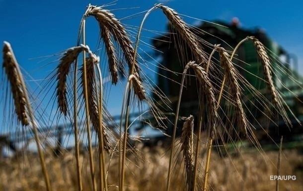 Україна зменшила експорт зернових