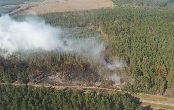 В Харьковской области тушат лесной пожар