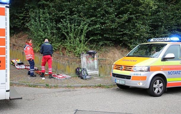 У Німеччині шершні напали на відвідувачів фестивалю