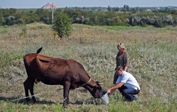 Хочу, щоб в Україні поважали і цінували корів