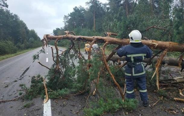 На Волині та Прикарпатті знеструмлені майже 50 населених пунктів
