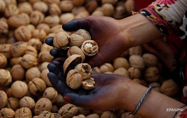 Украина резко увеличила экспорт орехов