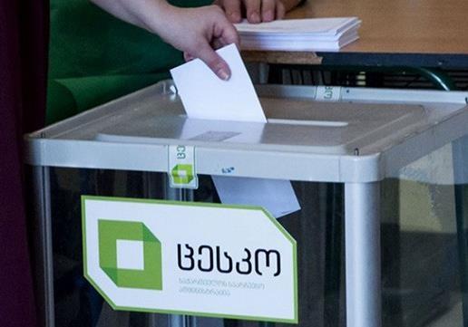 Грузия: в преддверии президентских выборов