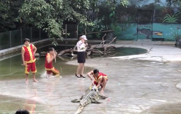 Дрессировщик в бассейн с крокодилами во время шоу