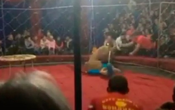 В России львица напала на ребенка в цирке