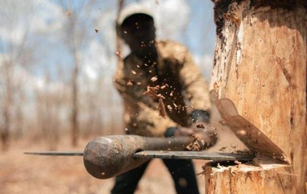 ЗМІ: У Слов янську стріляли в лісорубів, поранені шестеро
