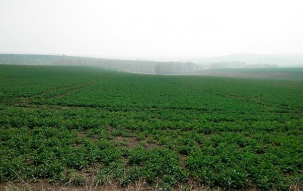 Заборона на продаж землі може коштувати €2-75 тисяч на людину - Мін юст
