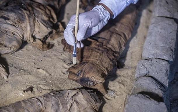В Египте раскопали древнюю коллекцию кошек-мумий