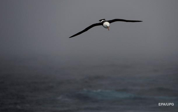 Українські вчені вперше за 17 років вирушили досліджувати Південний океан