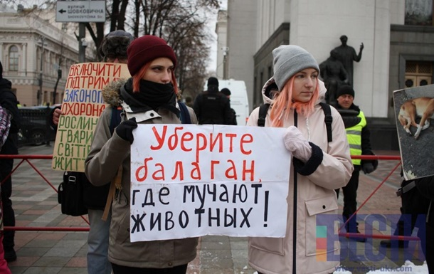 Под Верховной Радой митингуют зоозащитники