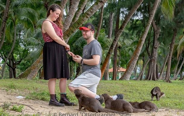 Появилось фото с  самым неожиданным  предложением женитьбы