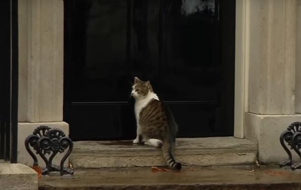 Полисмен открыл дверь коту британского премьера