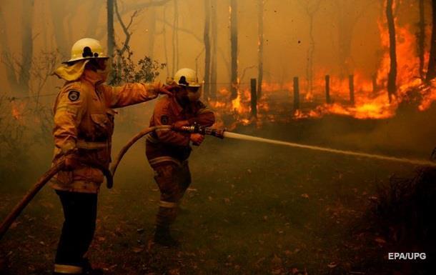 В Австралії гасять масштабні лісові пожежі