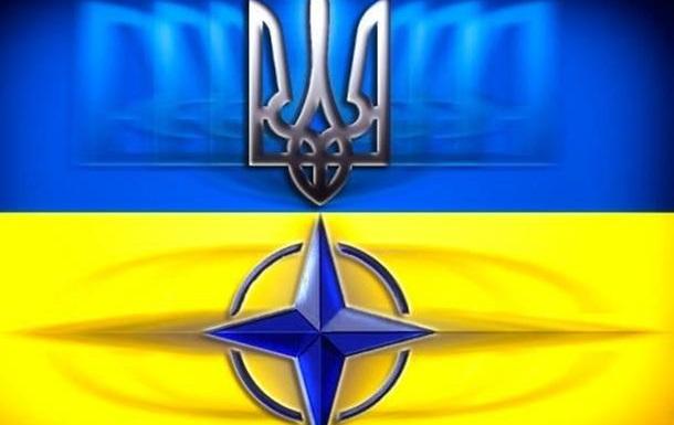 Украинцы высказались о вступлении Украины в НАТО. Видеосоцопросы