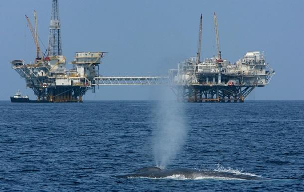 Цена на нефть резко обвалилась