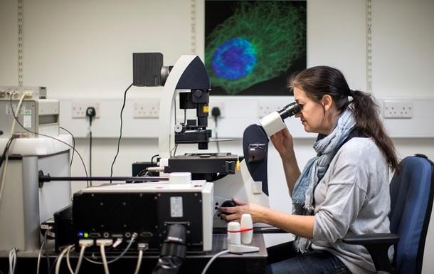 Бельгійські вчені заявили про створення вакцини проти вірусу Зика