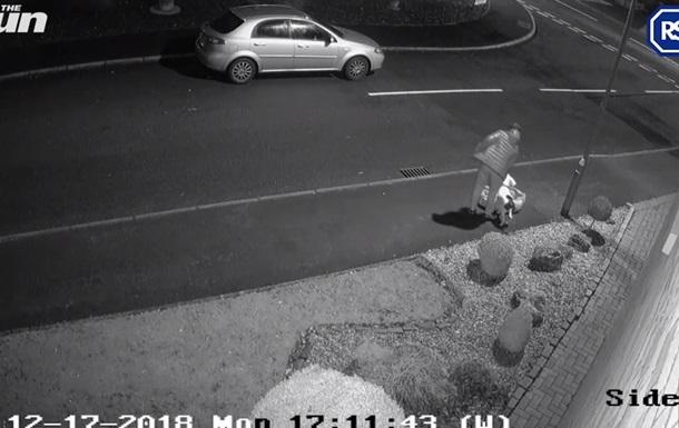 Реакция выброшенного хозяином пса попала на камеру