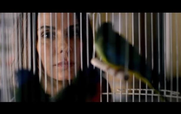 Netflix призвал остановить флешмоб в честь Птичьего короба