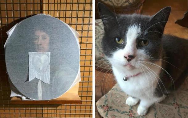 В Британии кошка испортила картину XVII века