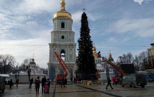 Главную елку страны демонтируют