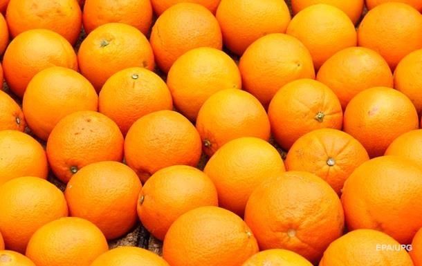 В Украину не пропустили зараженные мандарины и апельсины
