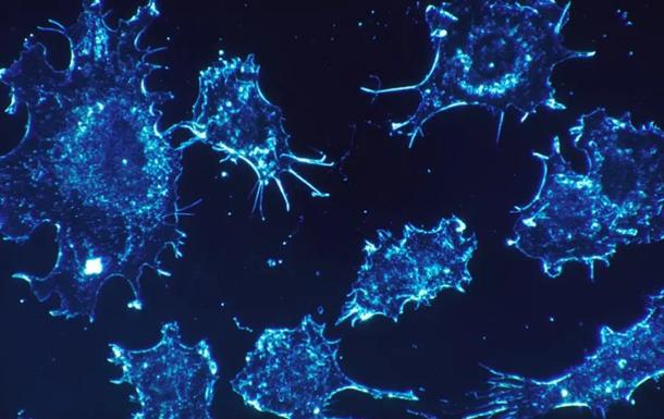 Ученые создали вакцину против рака, но им не верят