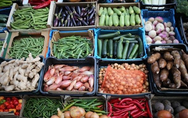 Український агроекспорт в ЄС за рік зріс на 9%