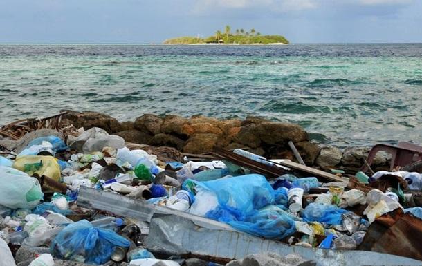 Морські ссавці потерпають від мікропластику - науковці