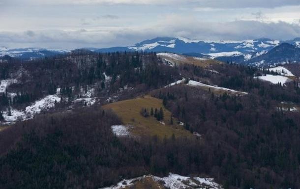 Україна і ЄС обумовлюють заборону з вивезення лісу