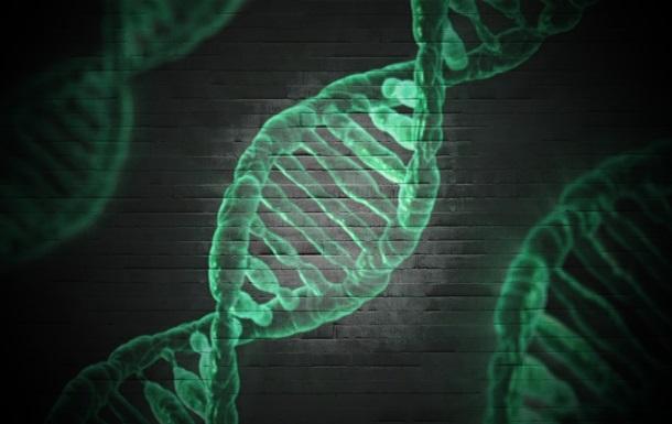 Бытовые товары опасны для здоровья мужчин – ученые