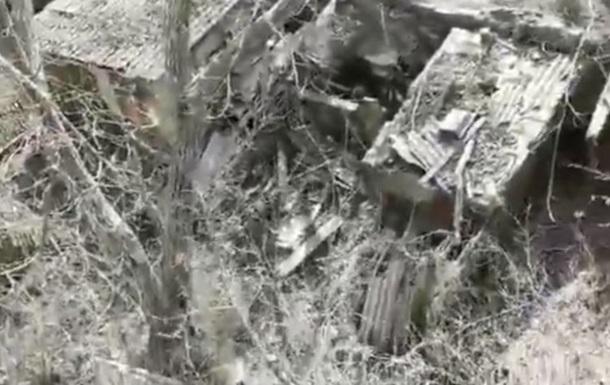 У Миколаєві кілька вулиць засипало борошняним пилом