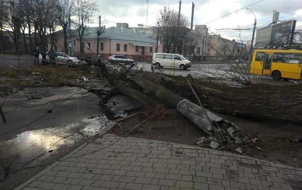 Вітер позривав дахи і повалив дерева на заході України