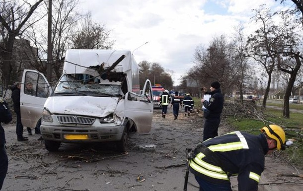 У Миколаєві дерево впало на маршрутку, постраждали діти