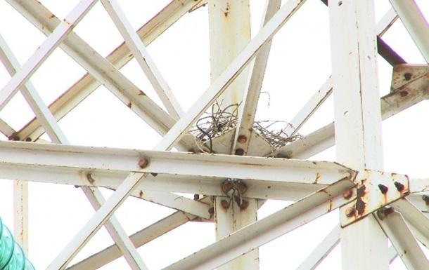 Частина Одеси залишилася без світла, енергетики звинувачують ворону