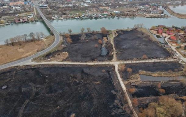 В Одеській області сталася масштабна пожежа в заповіднику