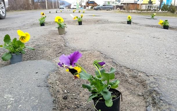 На Закарпатті до приїзду Порошенка в дорожніх ямах  посадили  квіти