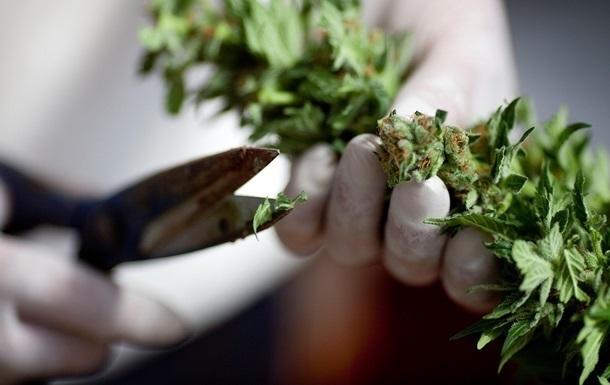 В Раде разработают закон о легализации марихуаны