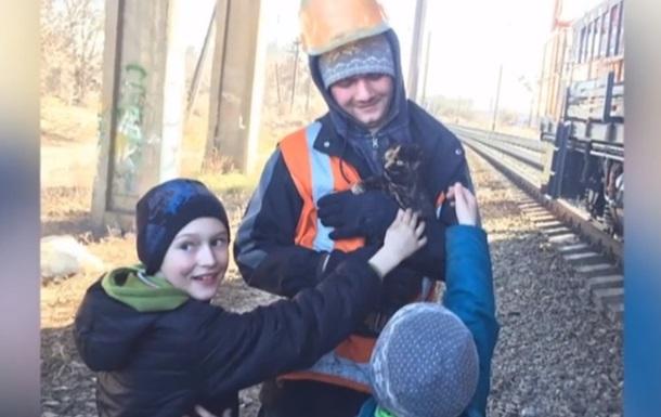 В Ровно спасли кота, просидевшего четыре дня на опоре моста