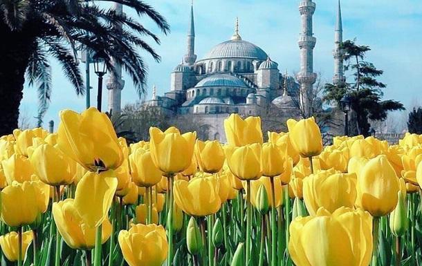 В Стамбуле зацвели 13 миллионов тюльпанов