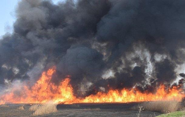 У Миколаєві спалахнула масштабна пожежа