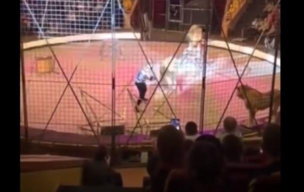 У Луганську лев напав на циркача