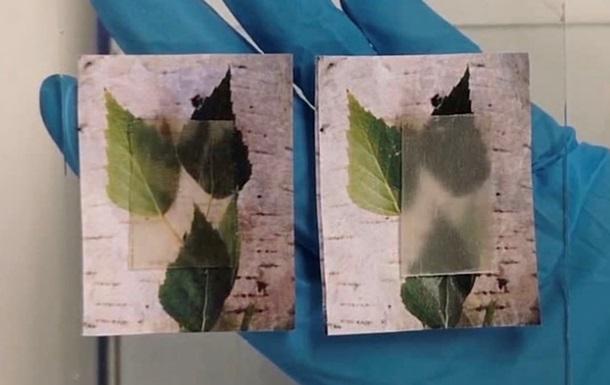 Шведські вчені створили прозору деревину