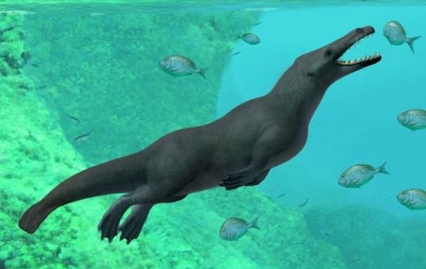 Палеонтологи обнаружили скелет морского чудовища в Перу