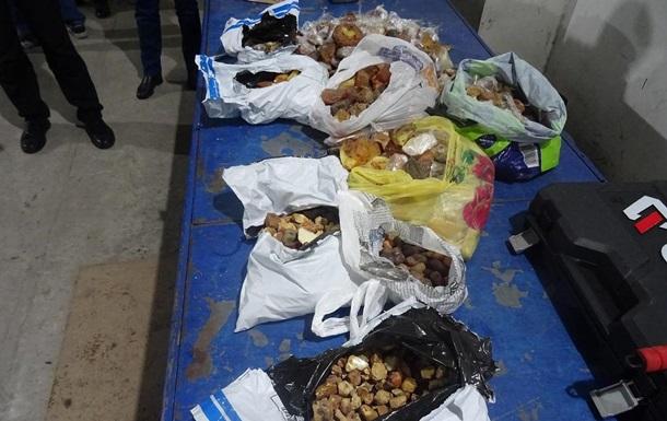 Українець хотів вивезти до Польщі 25 кг бурштину