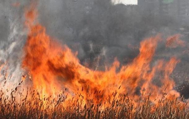 У Житомирській області загинуло подружжя, спалюючи траву