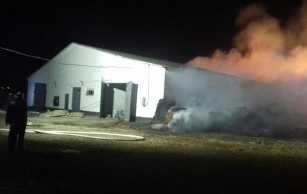 Пожар на ферме в Киевской области тушили всю ночь
