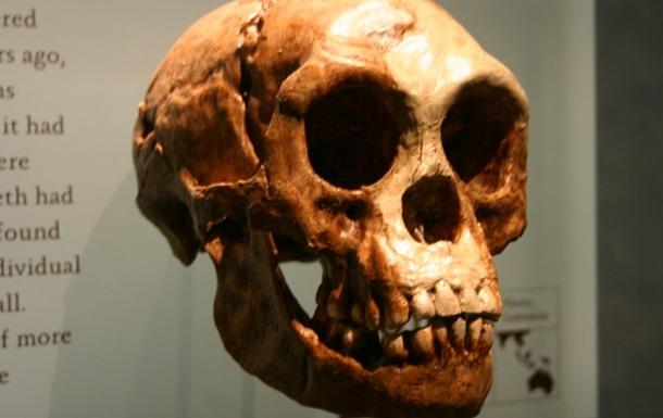 Найден ранее не известный вид древних людей